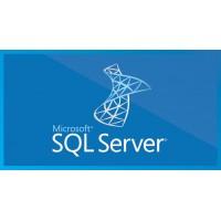 SQL Server CAL OLP NL Gov User CAL 359-06886