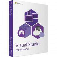 Microsoft Visual Studio Professional 1- 5 licnese Subscriptions 1 Month