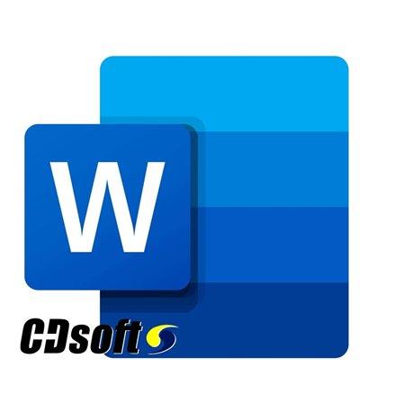 תוכנת מיקרוסופט וורד Microsoft Word 2021 OLP - DG7GMGF0D7D30002