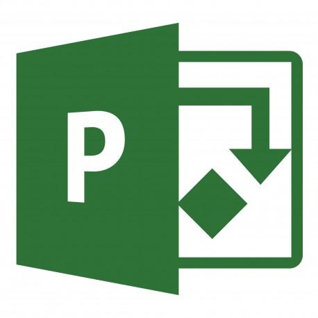 Microsoft Project Server CAL OLP NL Gov User CAL H21-03569